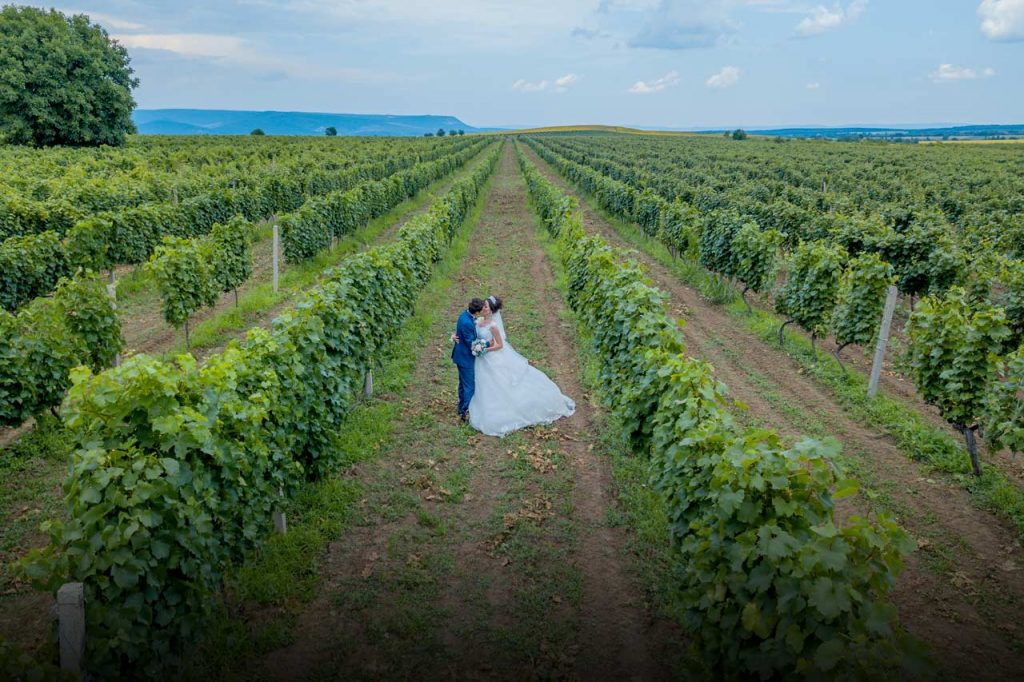 Grape Wedding